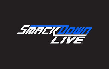 smackdown 380 x 242.jpg